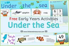 FREE 'Under the Sea' Topic/Sea Animals printable Early Years (EYFS) resources, activities, games, fact cards, displays and more! Little Owls Resources  FREE at www.littleowlsresources.com Eyfs Activities, Activity Games, Literacy Activities, Learning Cards, Learning Resources, Nursery Practitioner, Alphabet Display, Early Years Teacher, Role Play Areas