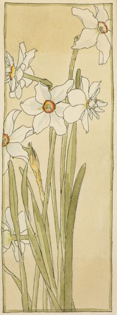 Untitled ('Poet's Narcissus') circa 1915. Watercolour and ink by Hannah Borger Overbeck (1870-1931).Image and text courtesy LACMA.