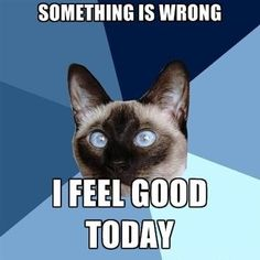 """& if I do, please don't think I'm magically healed. I'm taking advantage of the """"good"""" day. Adrenal Fatigue"""