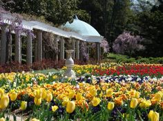 15 Places In Virginia Are AMAZING – And The Best Part? They Don't Cost Anything 3. Maymont, Richmond