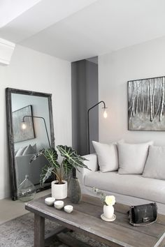 A gray living room - like the mirror idea - adds a sense of more space