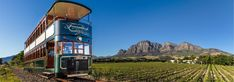 So, you've got just one day in Franschhoek and you want to see as much as possible? Never fear, we've got you covered with this jam-packed one day itinerary! Bordeaux, Cape Town Tourism, Wine Safari, Sightseeing Bus, Le Cap, City Pass, Table Mountain, Pilgrimage, Places To See