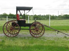 Doctor's Horse-Drawn Carriage/Buggy