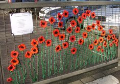 my Flanders Fields for Remembrance Sunday 2012 Try on fence or gate. Remembrance Day Activities, Remembrance Day Poppy, Paper Plate Poppy Craft, Poppy Craft For Kids, Poppy Wreath, Flanders Field, Anzac Day, Fence Art, Yarn Bombing