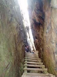 wood ladder favela - Pesquisa Google