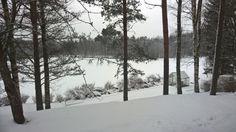 Lumipeitteen alla