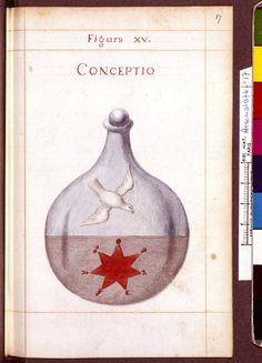 Figura XV - Conceptio - Sapientia veterum philosophorum, sive doctrina eorumdem de summa et universali medicina 40 hierogliphis explicata
