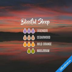 Blissful Sleep Diffuser Blend