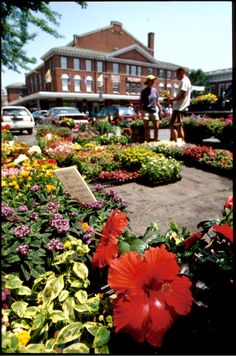 The Roanoke Market