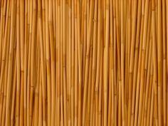 Texture: Bambooo