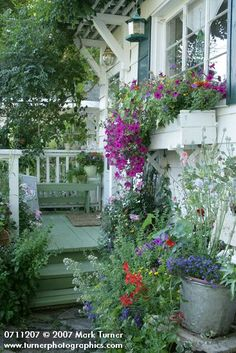 Pretty window box by this charming back porch