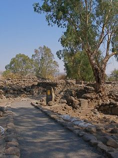 """Ruins of Bethsaida: Where Jesus healed a blind and mute man (Mark 8:22-26) and Jesus also cursed Bethsaida-- """"Woe to you, Chorazin! Woe to you, Bethsaida! For if the mighty deeds done in your midst had been done in Tyre and Sidon, they would long ago have repented, sitting in sackcloth and ashes. But it will be more tolerable for Tyre and Sidon at the judgment than for you. -Luke 10:13-14(NABRE)"""