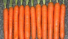 Když sazím mrkev, držím se této ověřené rady: Celá léta už mám úrodu, že mi ji chodí obdivovat všichni sousedé! - Příroda je lék Czech Recipes, Hydroponics, Gardening Tips, Harvest, Carrots, Home And Garden, Flora, Vegetables, Green