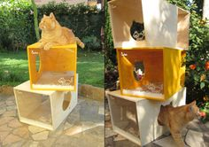 modular cat tower | shoebox dwelling