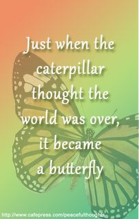 I just love this quote.  It suggests that we can use what seems like disaster as a reason to reinvent ourselves and soar.