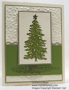 Heat Embossed Evergreen by cmstamps - Cards and Paper Crafts at Splitcoaststampers