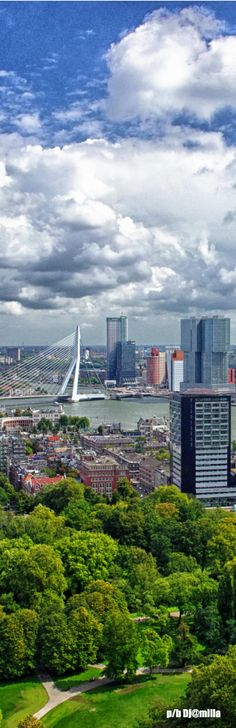 Rotterdam - The Netherlands