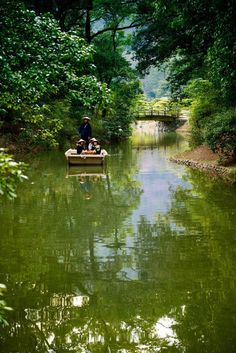 Ritsurin Garden (栗林公園)
