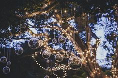Suspended glass globes + twinkle lights | Image by Lisa Lefringhouse Photography
