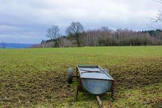 Grassland in Belgium, weiland in Belgie