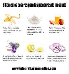 6 Remedios caseros para las picaduras de mosquito