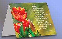 Greeting Cards by theKIRKLEYcollection on Etsy, $16.00 Free shipping in the USA!