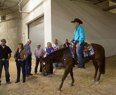 Article: Nerves Could Kill Your Run Western Riding, Trail Riding, Horse Tips, Barrel Racing, Livestock, Tack, Me Too Shoes, Westerns, Passion
