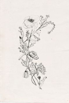 Wildflowers with poppy. Nadezda Fava tattoo design. Instant download in my etsy shop: https://www.etsy.com/listing/176001456/wildflowers-tat...