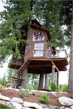 A tree house by the