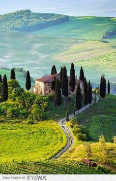 Wine tasting in Toscana