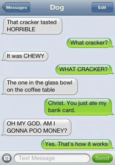 Texts from dog texts юмор Funny Dog Texts, Funny Texts Jokes, Funny Texts Crush, Text Jokes, Funny Text Fails, Funny Text Messages, Stupid Funny, Funny Dogs, Funny Memes