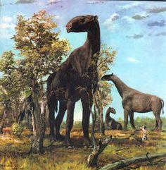 Zdeněk Burian #Paraceratherium #vintage #paleoart  haha the vintage tag