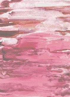 Soft Pink   Flickr - Photo Sharing!
