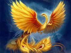 phoenix wallpaper illustration