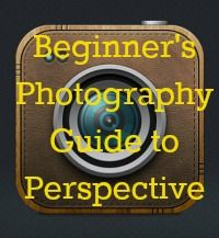 Beginner's photography guide to Perspective - lots of fab photos, ideas and examples The Ultimate Pinterest Party, Week 53