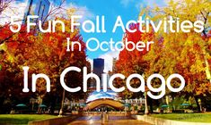 5 Fun Fall Activities in Chicago l Fun Things To Do in Chicago