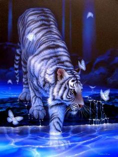 a beautiful image with a white tiger!