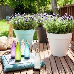 Genieten van je zomertuin in mediterrane sferen. #intratuin #tuin #zomer #lavendel #solarfles