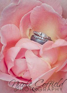 wedding ring photography  - shot at a higher aperture - wedding bands inside a rose flower