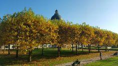 """Há pouco tempo postei aqui algumas dicas para curtir o outono na cidade e hoje trago pra vocês meus registros """"por aí"""" da estação mais linda em Munique. :)"""