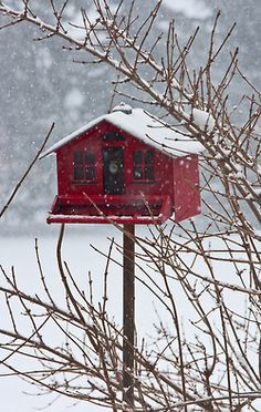 Red Barn Bird House just for the Birds in Winter Snow Scenes, Winter Scenes, Winter Beauty, Winter Garden, Winter Time, Winter Christmas, Country Christmas, Winter Holidays, Christmas Time