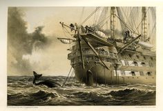 HMS Agamemnon laying the Atlantic Telegraph cable in 1858. A whale crosses the line. Illustration by Robert Dudley IET Archives ref. NAEST 045/120.