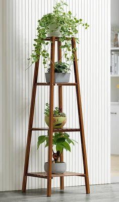 Tall Plant Stand Indoor, Wooden Plant Stands Indoor, Tall Indoor Plants, Small Plant Stand, Modern Plant Stand, Wood Plant Stand, Hanging Plants, Plant Ladder, Plant Wall
