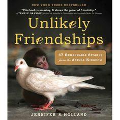 Unlikely Friendships, a book for animal lovers! £9.99.