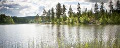 Gothenburg- Sweden - VisitSweden: The official guide to travel and tourism in Sweden