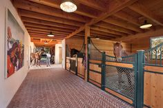 dream stables