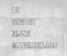 De Bewustzijnsontwikkelaar www.bewustzijnsontwikkelaar.nl