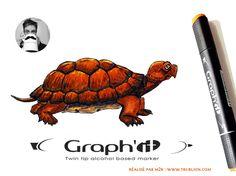 Trublion m2r - Tortue au feutre à Alcool Graph'it Graph It, Logo Typo, Creations, Turtle, Paint, Drawing Drawing