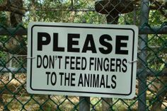 Please Don't Feed the Animals (54 pieces)