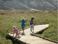 Things to Do in Death Valley National Park with Kids